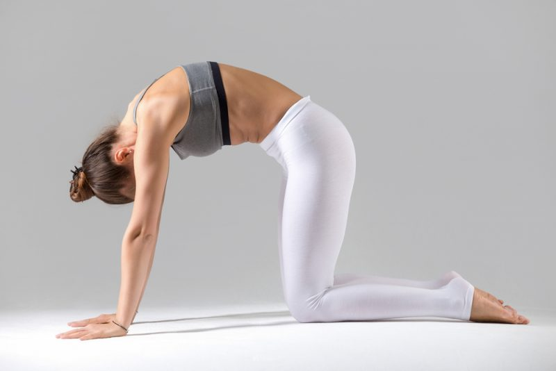 Marjaryasana — Cat/Cow Pose
