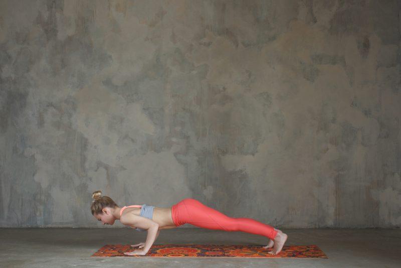 Chaturunga Dandasana – Low Plank Pose