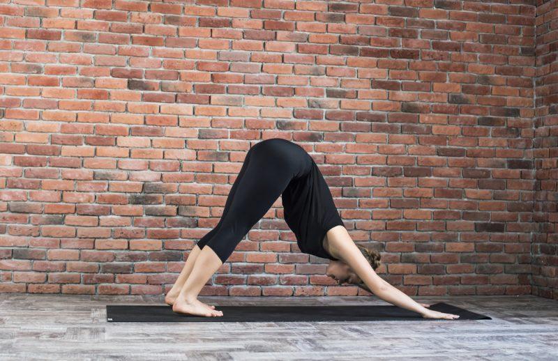 Adho Mukha Svanasana — Downward Facing Dog Pose