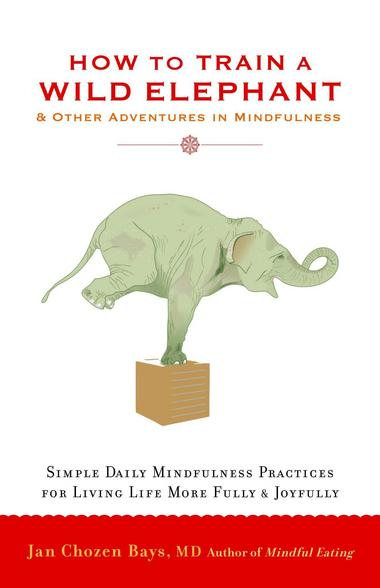 How to Train a Wild Elephant And Other Adventures in Mindfulness by Jan Chozen Bays
