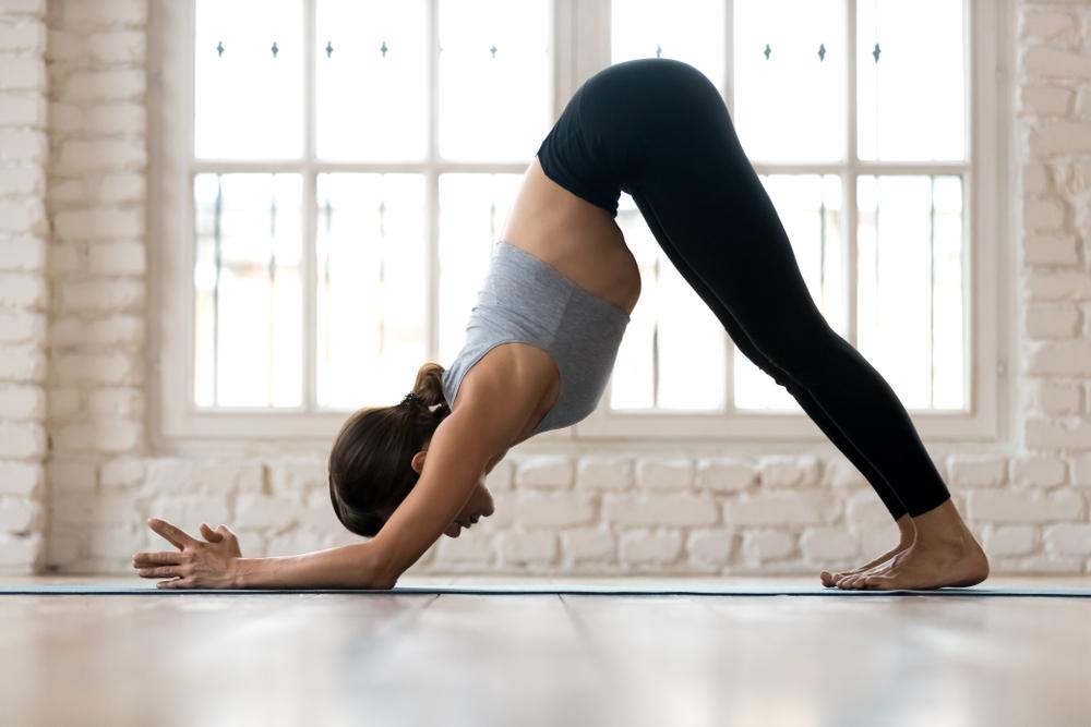 When Do You Use Dolphin Pose?