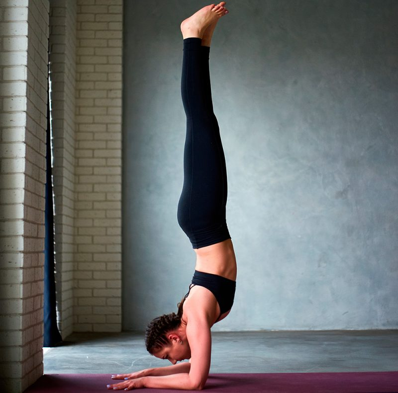 Pincha Mayurasana — Forearm Stand Pose
