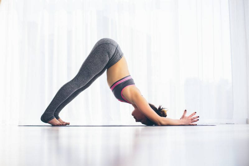 Ardha Pincha Mayurasana — Dolphin Pose