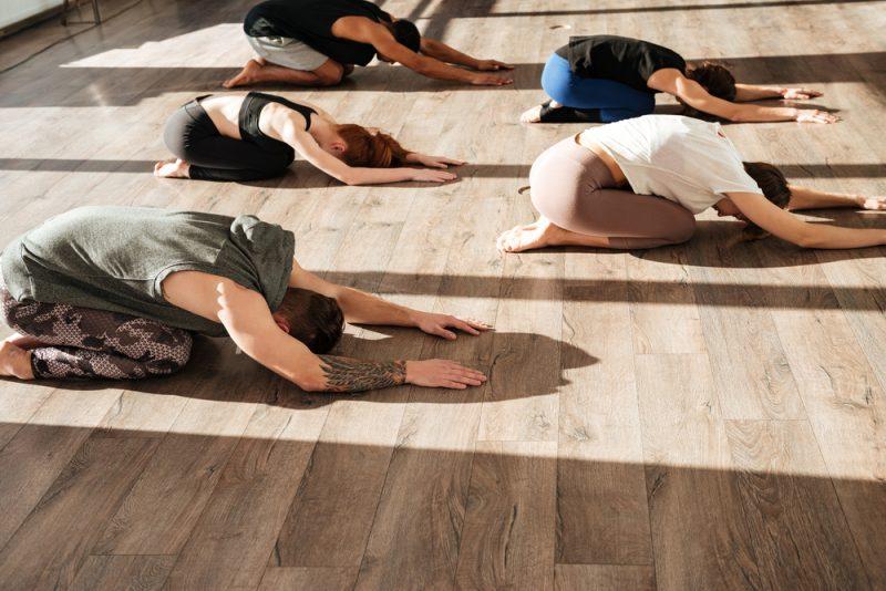 The Scholars Of Raja Yoga