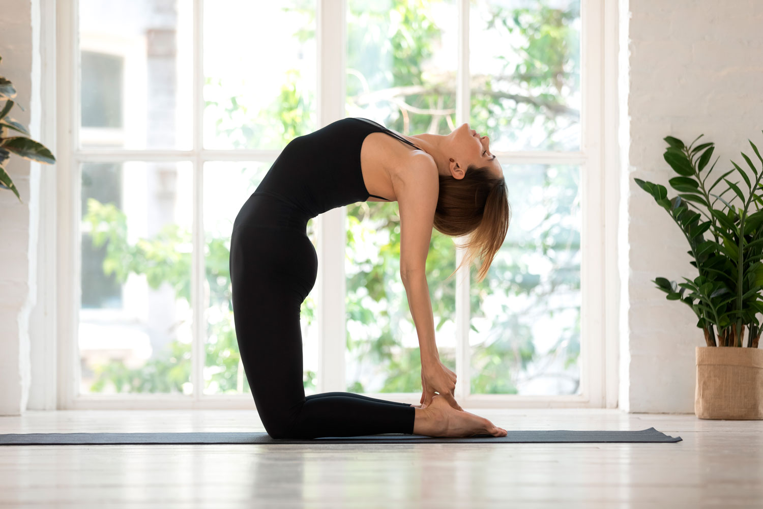 Ultimate Guide To Camel Pose (Ustrasana)