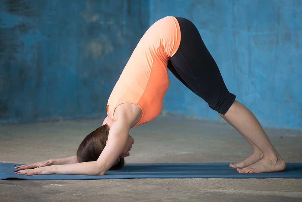 Dolphin Pose Step-by-Step Instructions